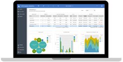 Cognos Analtyics Interactive Reports
